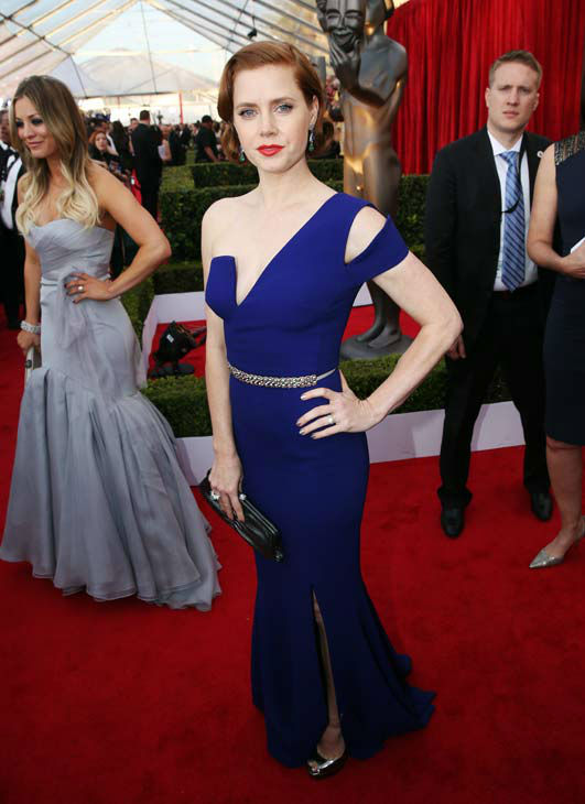 Amy Adams looking true Hollywood Glamour.